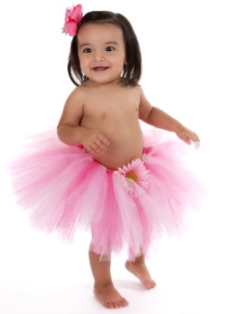 Strawberry Shortcake Tutu-pink tutu