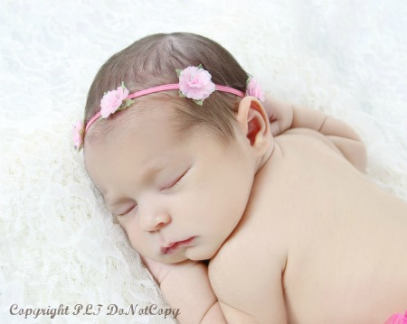 Bitty Blooms Infant Elastic Floral Crown Headband-newborn, pink, skinny, headband, flower, fairy, light pink