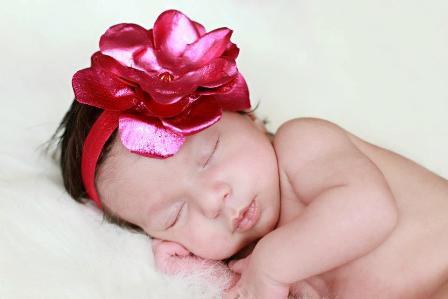 Metallic Raspberry Rose Flower Headband