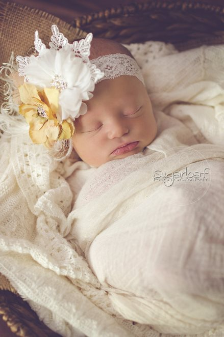 Tan & Cream Lace Feather Flower Vintage Headband