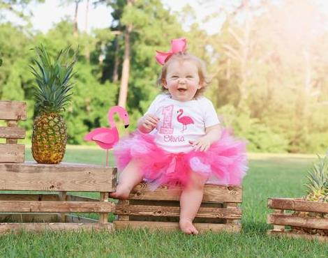 Pink Flamingo Personalized 1st Birthday Tutu Outfit